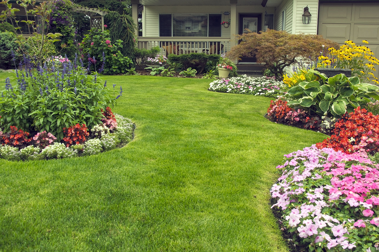Residential Lawn Care Services Ri Ct Amd Landscaping